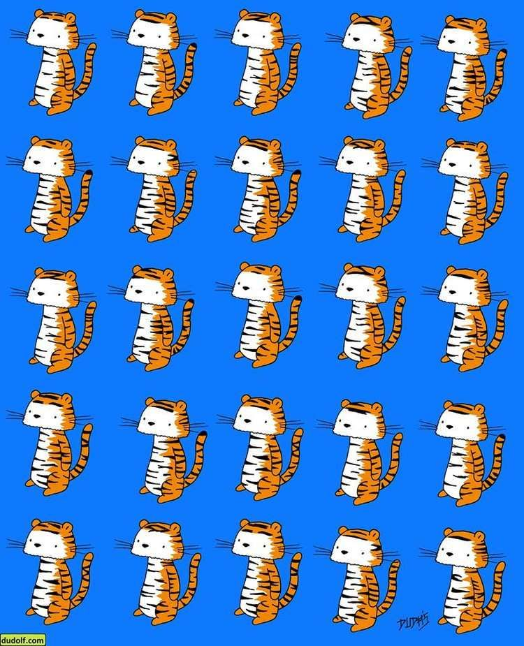 One of these tigers doesn't have a twin — can you spot