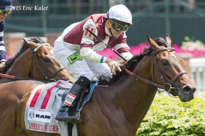 Divisidero (USA) 2012 Dkb/br.c. (Kitten's Joy (USA)-Madame Du Lac (USA) by Lemon Drop Kid (USA) 1st American Turf S (USA-G2,8.5fT,Churchill) (photo: Eric Kalet)