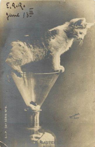 1907-French-Cat-RPPC-Kitten-in-Glass-Funnel-Sautera-Jump-Reutlinger-Ser-6