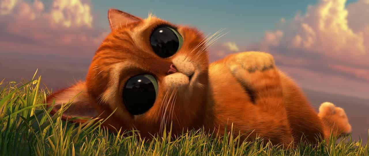 Картинки кот из шрека