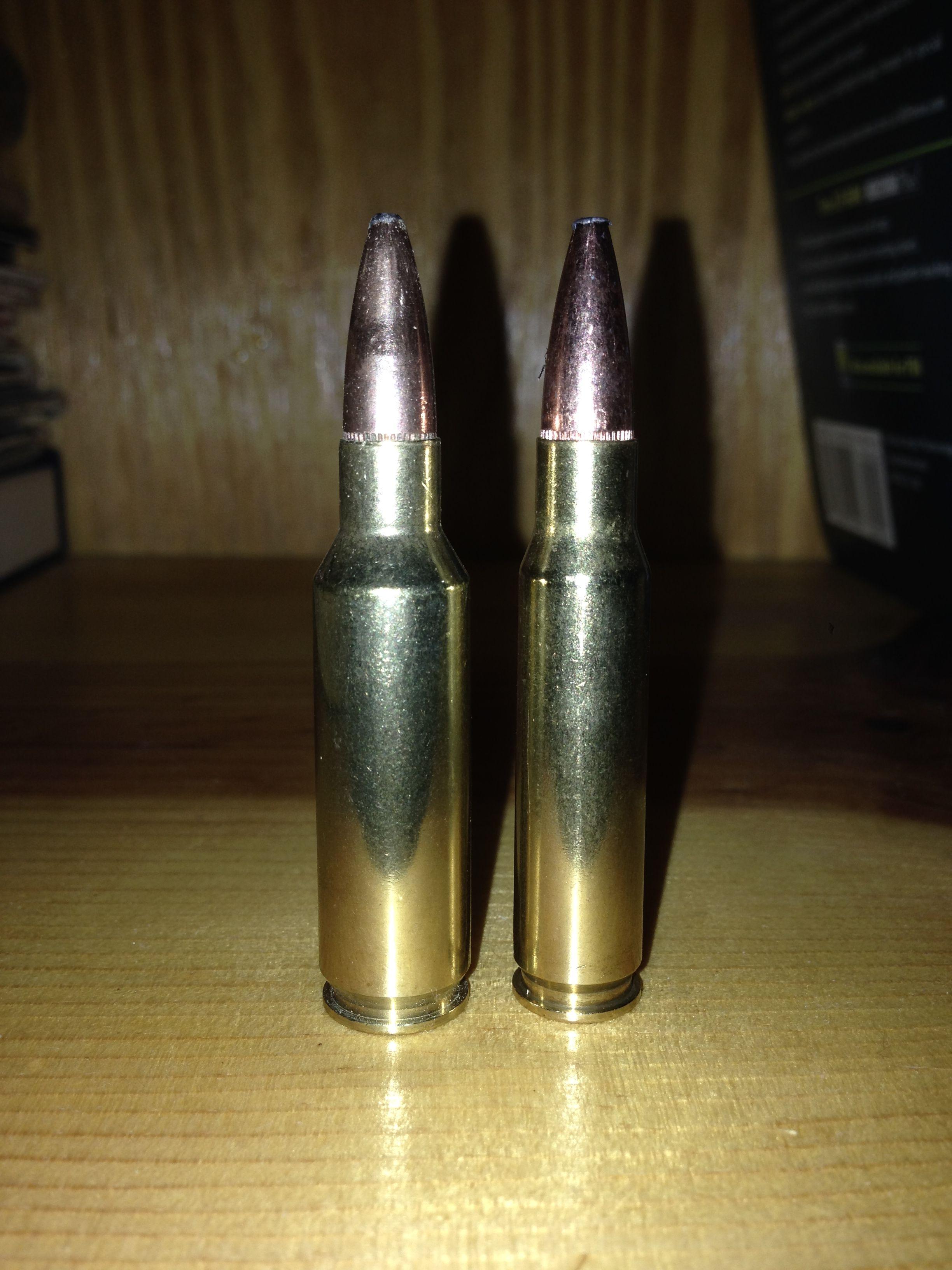 Gun room amp trophy room done hunting -  300 Saum Vs 308 Win Huntingguns