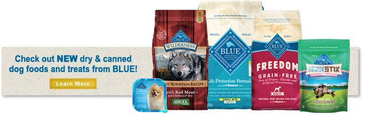 Blue Buffalo Dog Food Review Top 10 Best Dog Food Brands Best