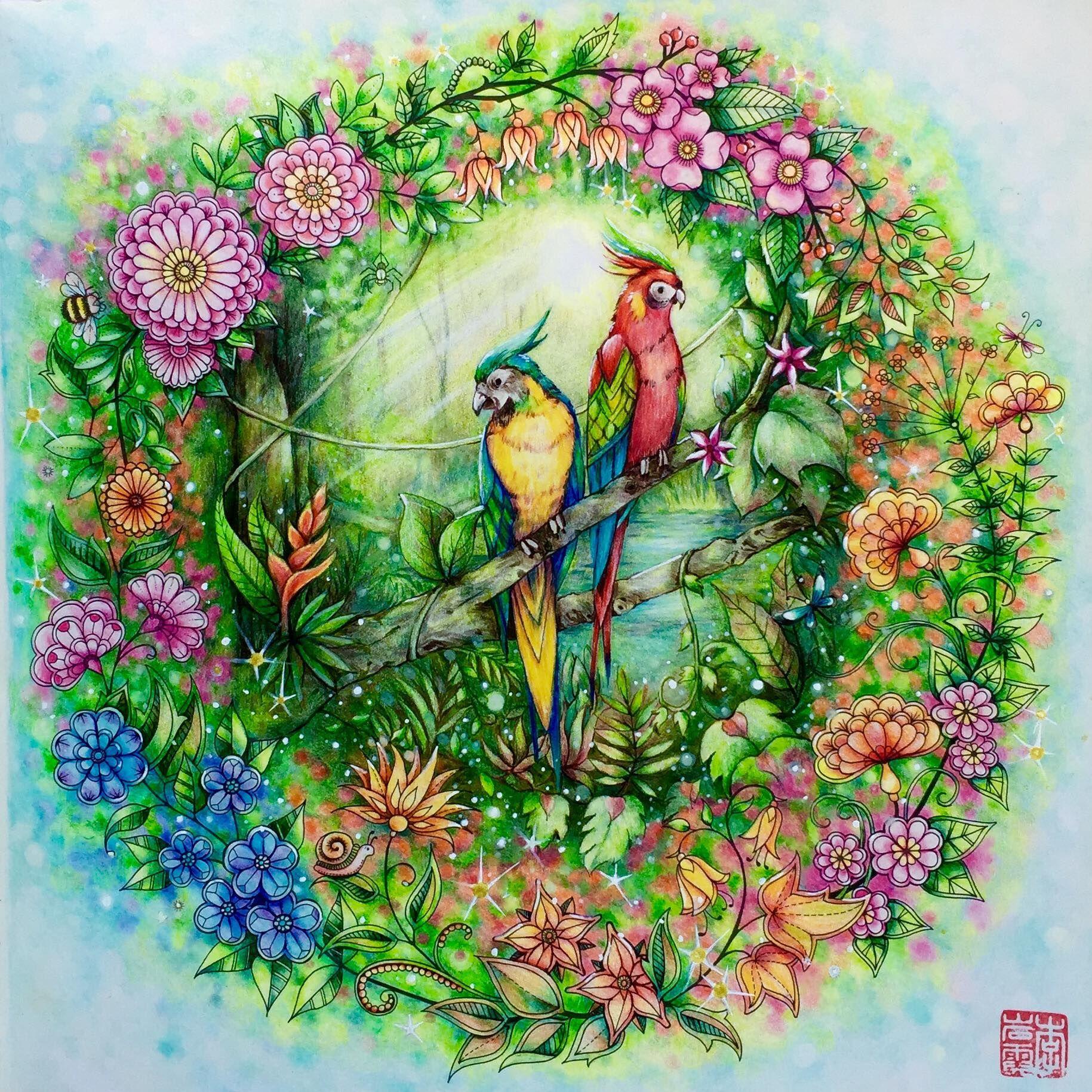 colored by cherry lee secretgarden johannabasford jarden