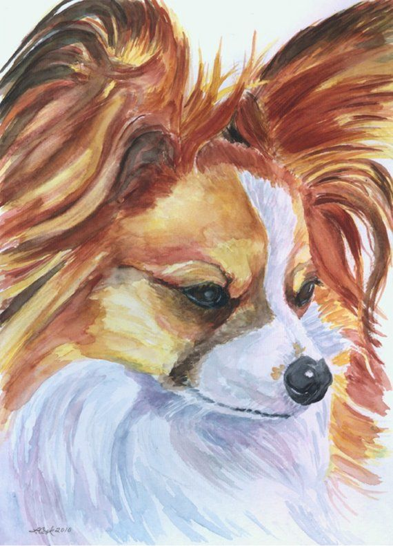papillon dog 8x10 art print poster watercolor painting