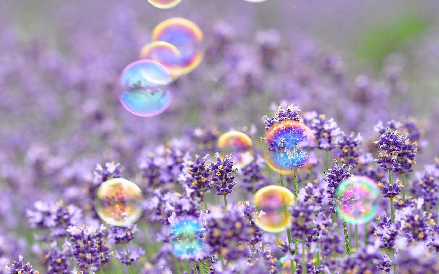 Ipad Wallpaper Little Plant In A Bubble: View Mood Bubbles Flowers Field HD Wallpaper
