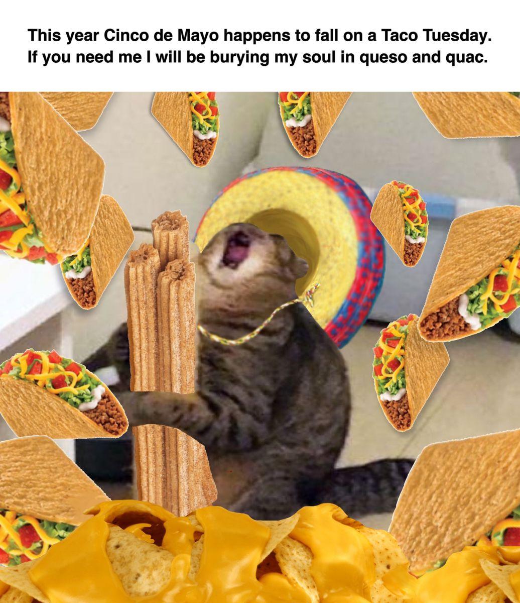 Cinco De Mayo Meme Covid