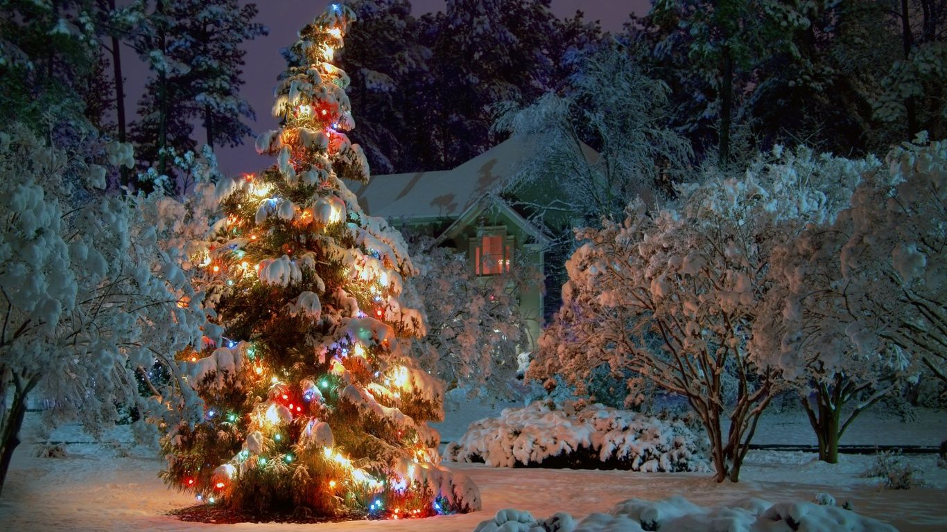 Snow Christmas Lights winter wonderland Bing Images