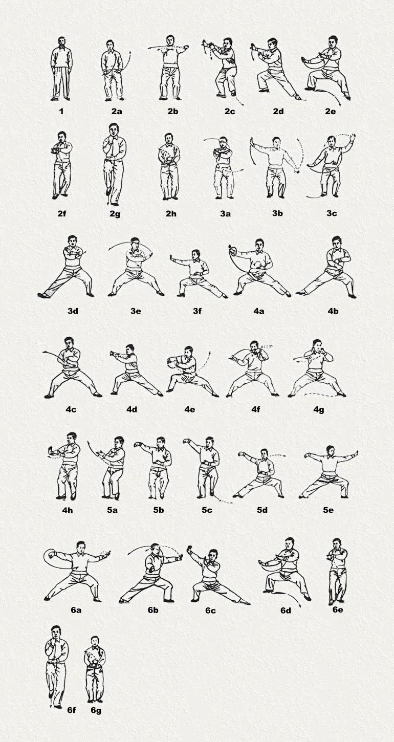chen taijiquan, first form section 1 movements 1-6