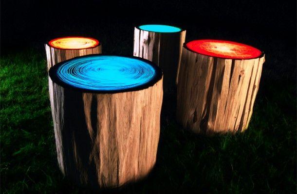 tree rings lights