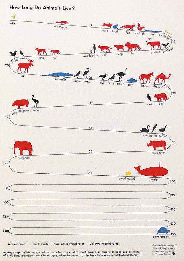 Een ISOTYPE (International System Of TYpographic Picture Education), een vroege vorm van infographics uit de jaren '30.