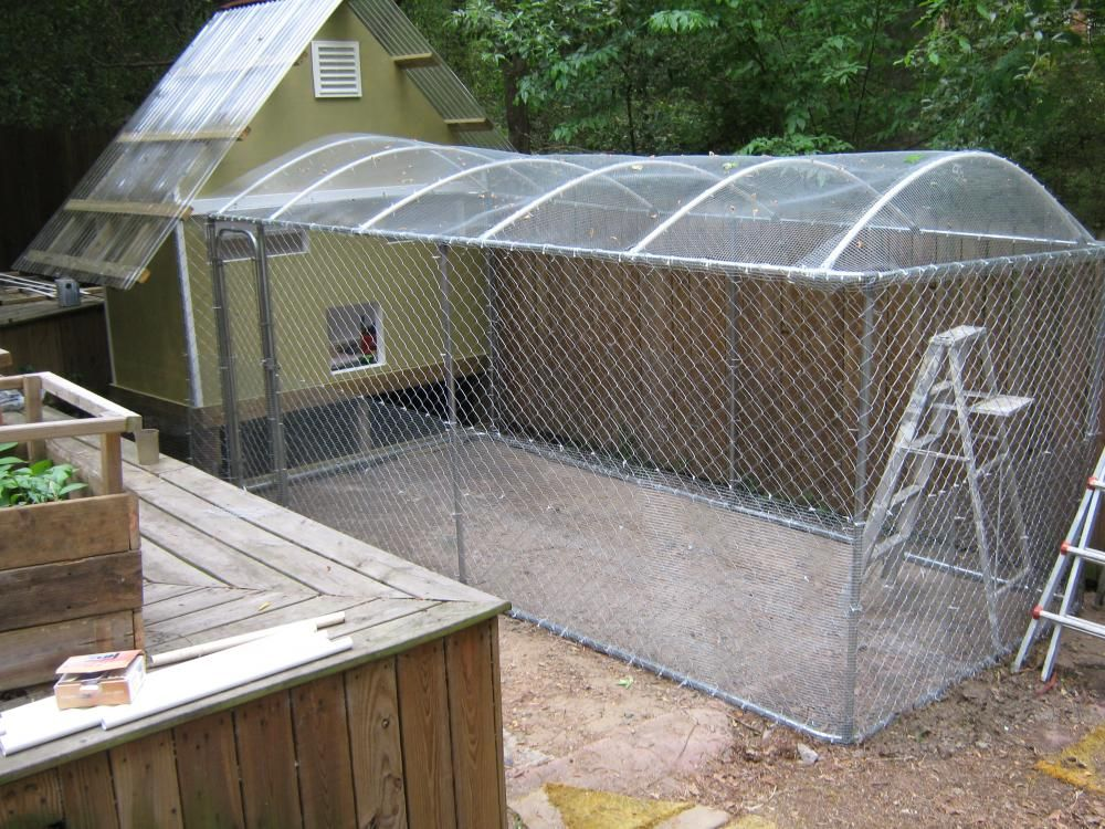 Stuck For A Kennel Run Roof Dog Stuff Dog Kennel