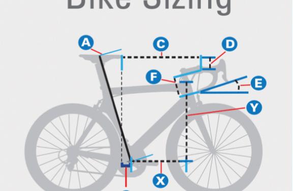 Bike Sizing And Body Measurements Diamondbackmountainbike