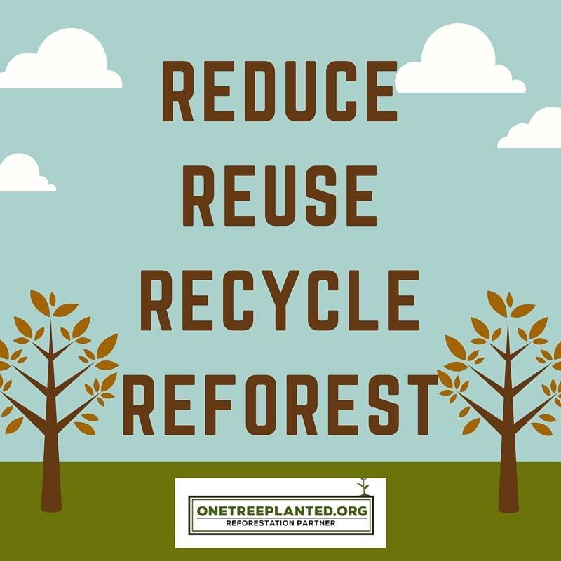 Reduce, Reuse, Recycle, Reforest. Join the Movement with