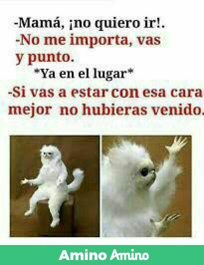Yo Con Mi Madre Funny Spanish Memes New Memes Mexican Funny Memes