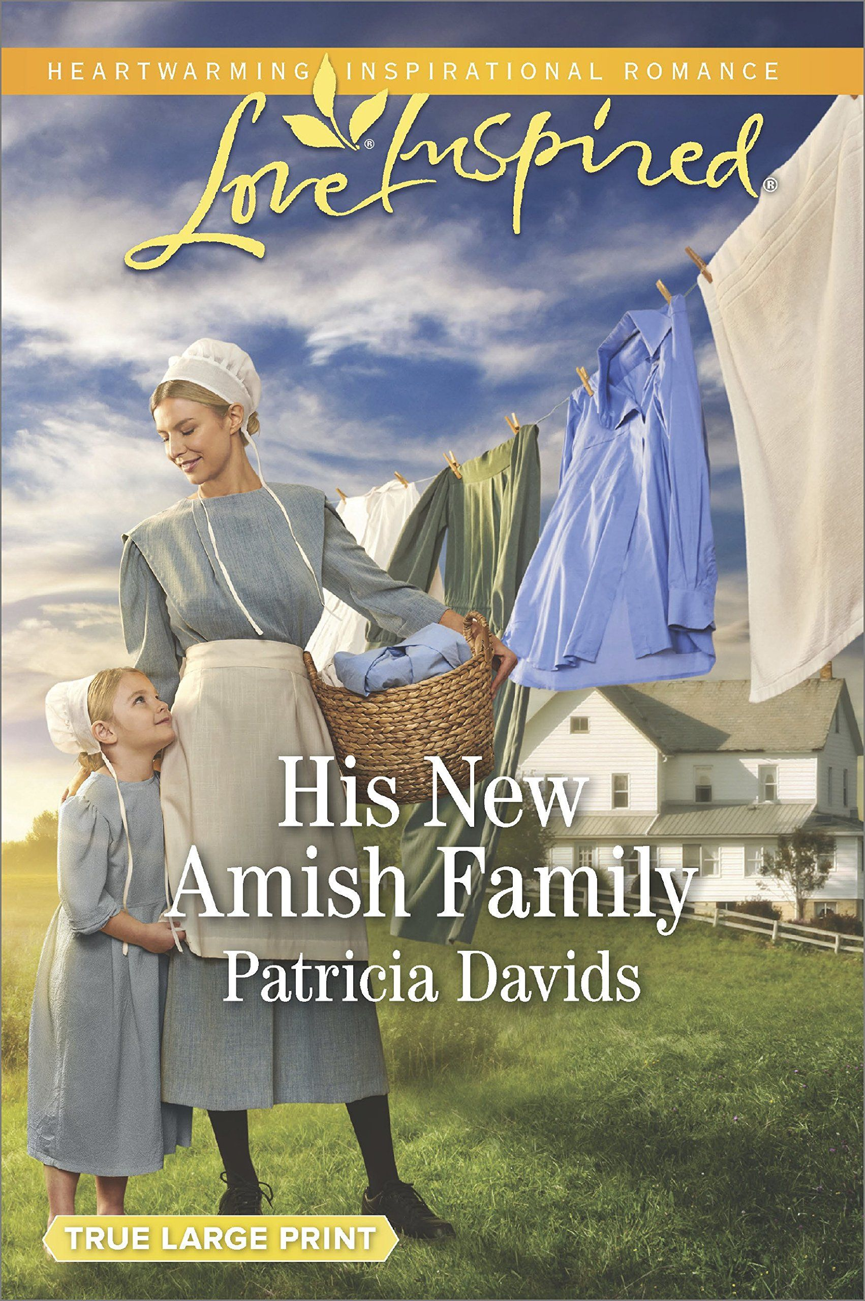 Image result for HIS NEW AMISH FAMILY BY PATRICIA DAVIDS