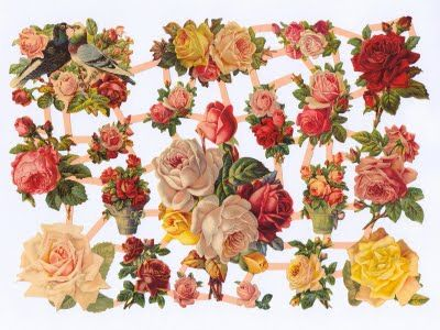 Turn of the century vintage floral print