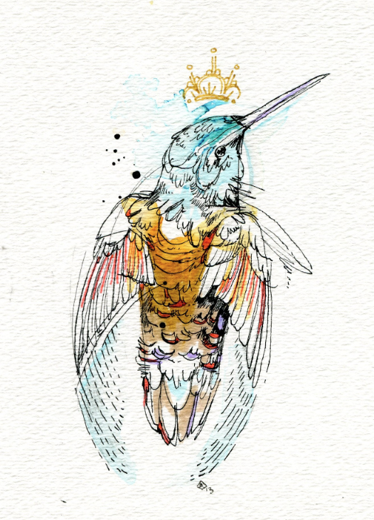 Just published a new project on Behance Hummingbirds! I