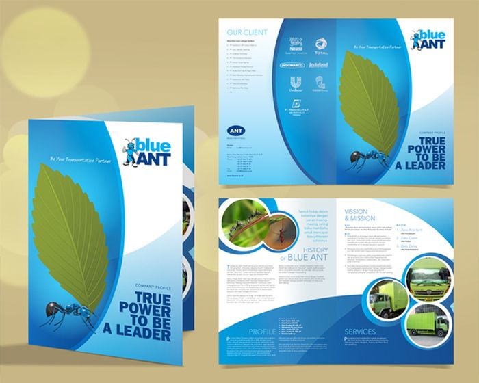 Profile-Design Flyer Pinterest Profile design, Company profile