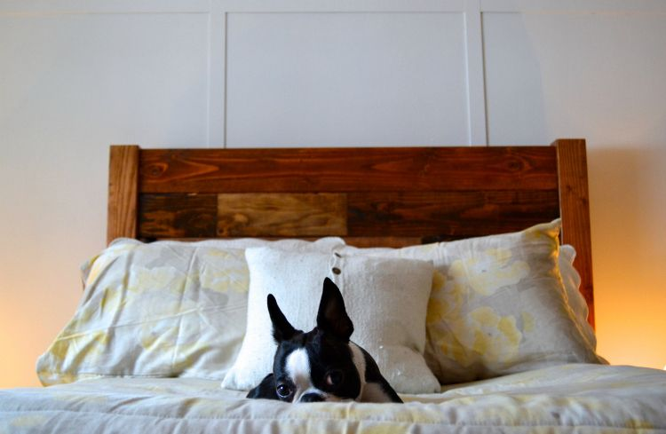 59 Incredibly Simple Rustic Décor Ideas That Can Make Your: Pin By Susanna Del Llano On Man's Bff