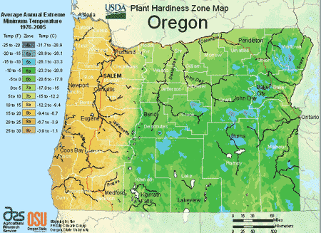 14b258c340875ef976b4b2fc113db1c8 - What Zone Is Portland Oregon For Gardening