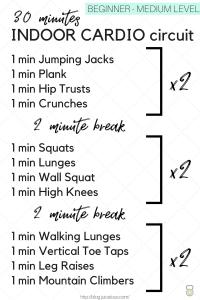 30 min indoor cardio circuit  beginnermedium level