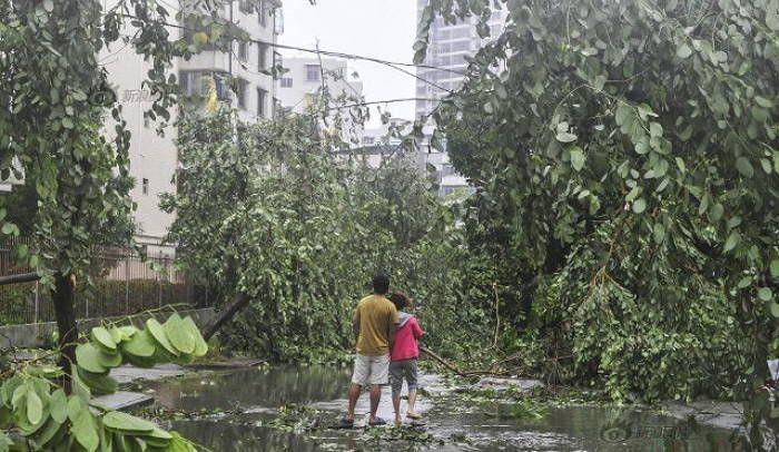 태풍 '무지개'가 휩쓸고 간 중국의 참혹한 현장 사진 12장 #insight