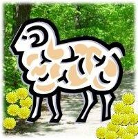 Moped: Kevätretki lampaan seurassa
