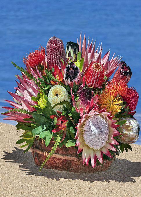 Extra Large Hawaiian Protea Basket Hawaiian Flowers Hawaiian Gifts Flowers