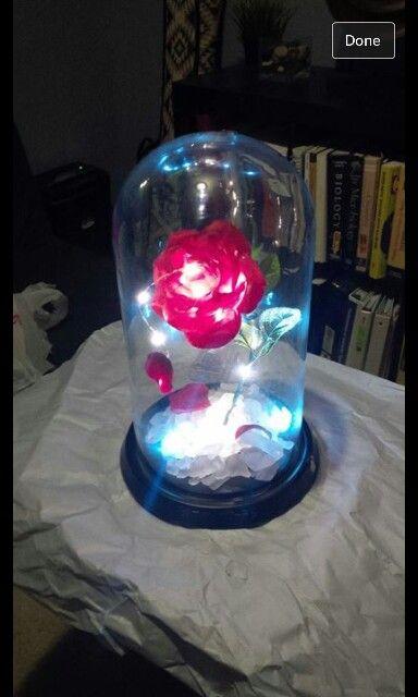 Enchanted Rose for Olive Oyl