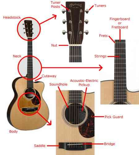 Http Www 4playguitar Com Images Guitar Acoustic Guitar Parts Jpg Guitar Acoustic Guitar Parts Acoustic Guitar