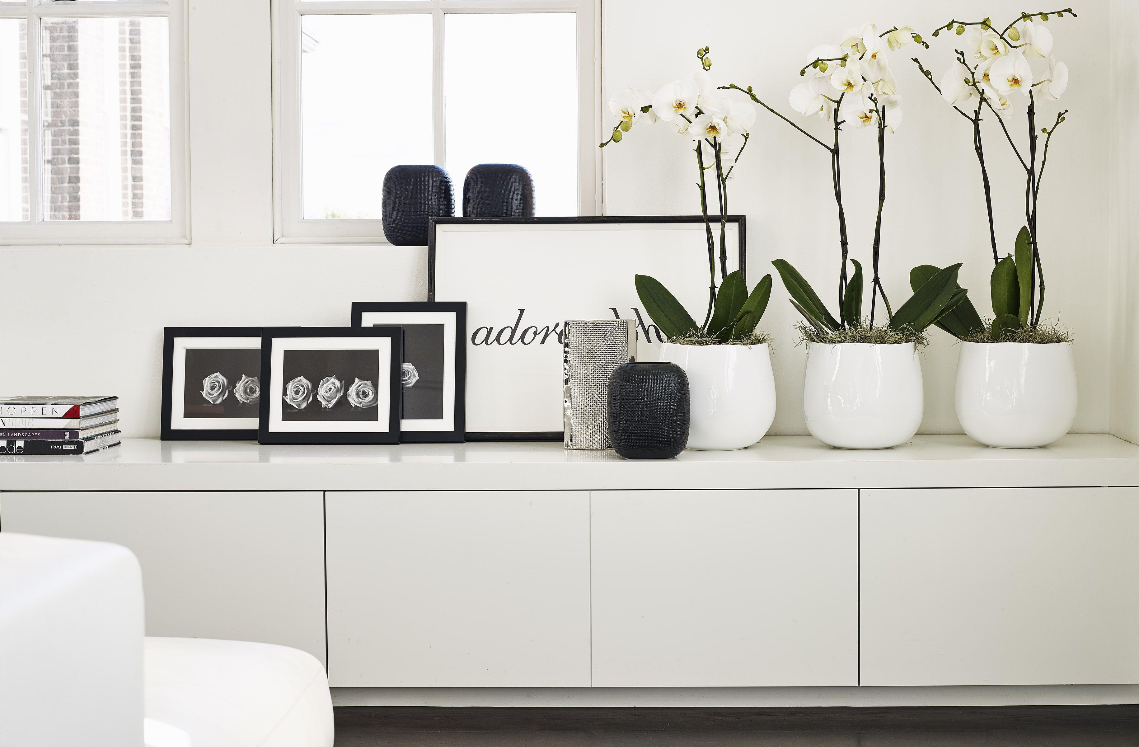 kelly hoppen opens online store wohnzimmer rund ums haus und einrichtung. Black Bedroom Furniture Sets. Home Design Ideas