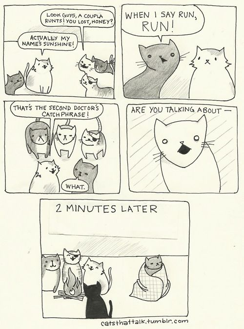 more cats like the doctor