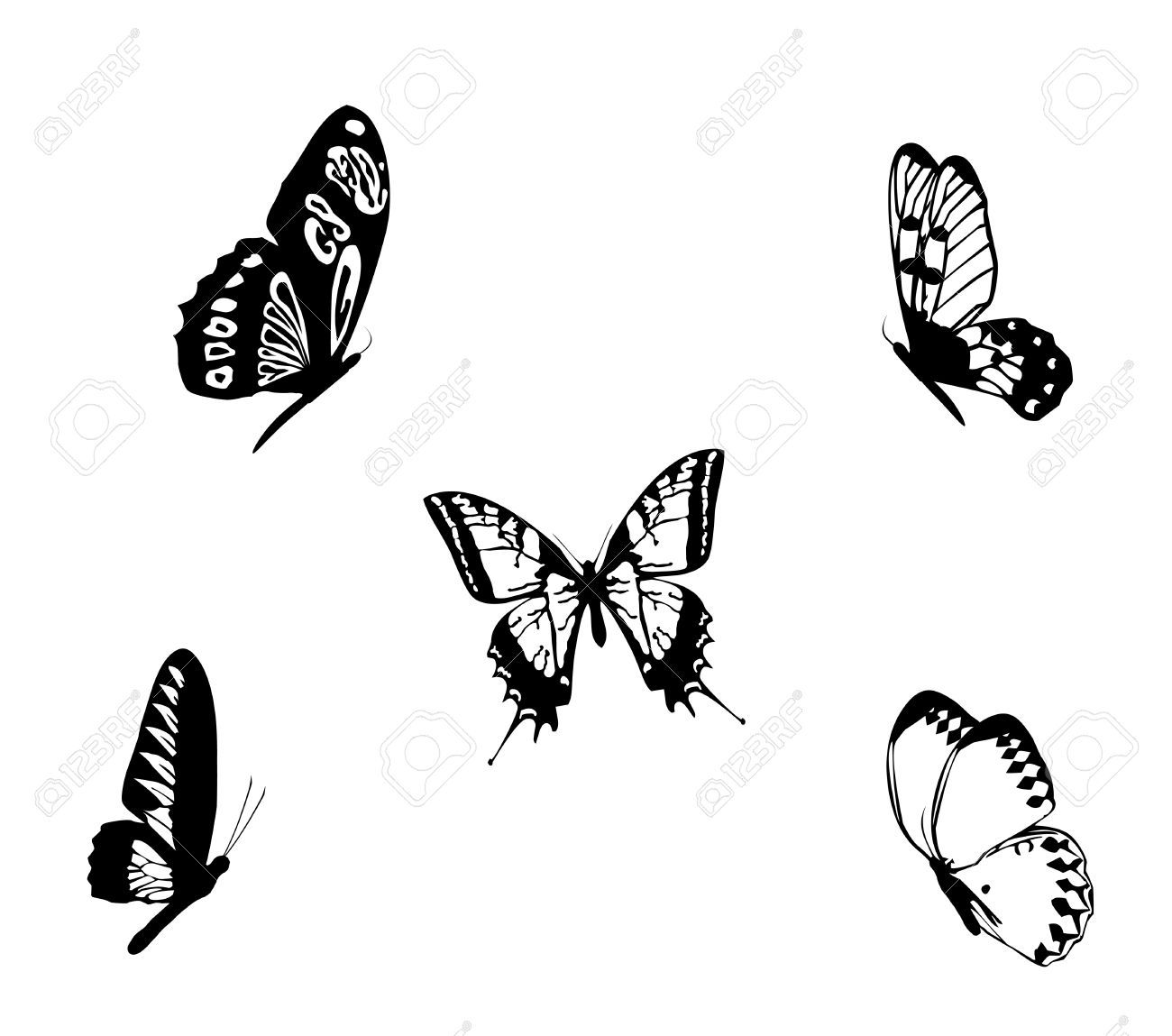 Image result for black and white butterfly tattoos ...