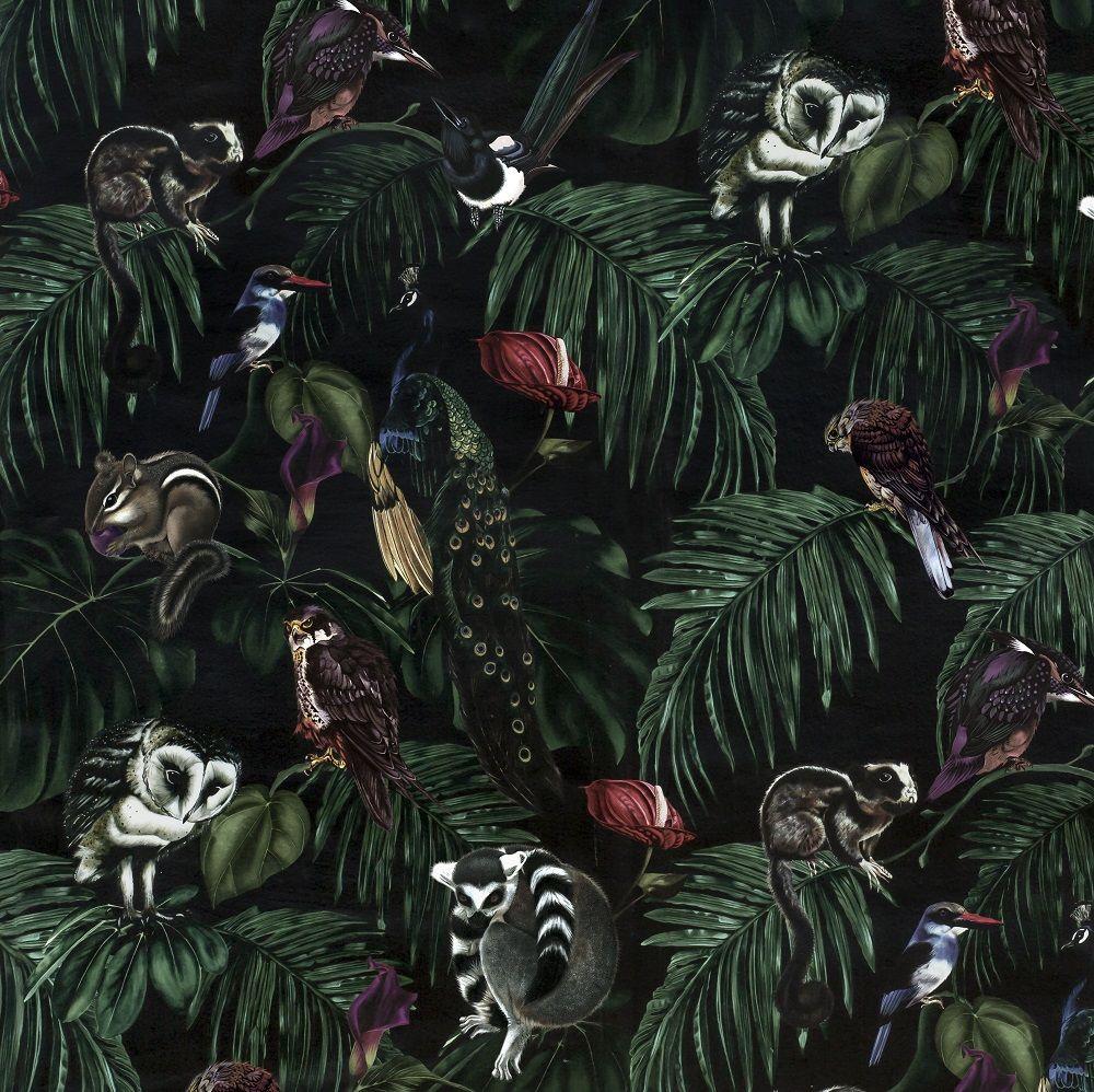 Amazonia - Dark