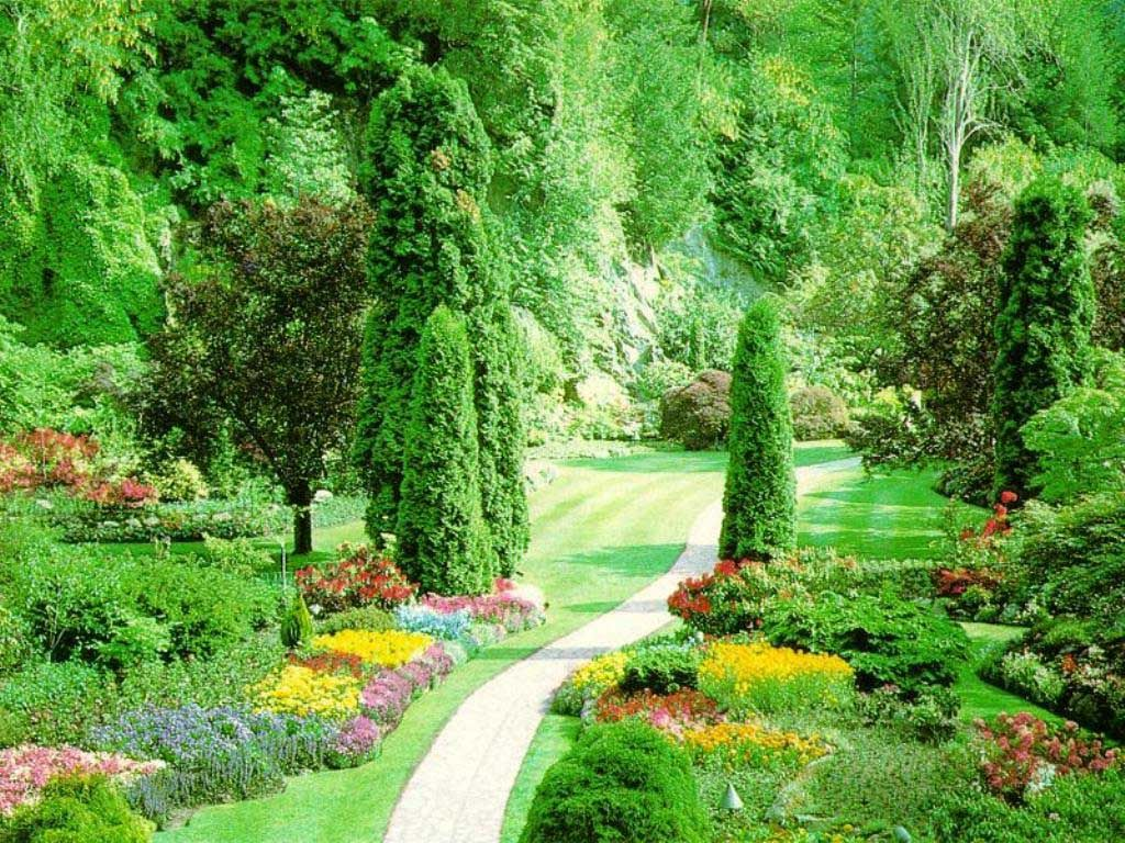 Beautiful Nature Wallpaper Beautiful Flowers Garden Garden Pictures Beautiful Gardens