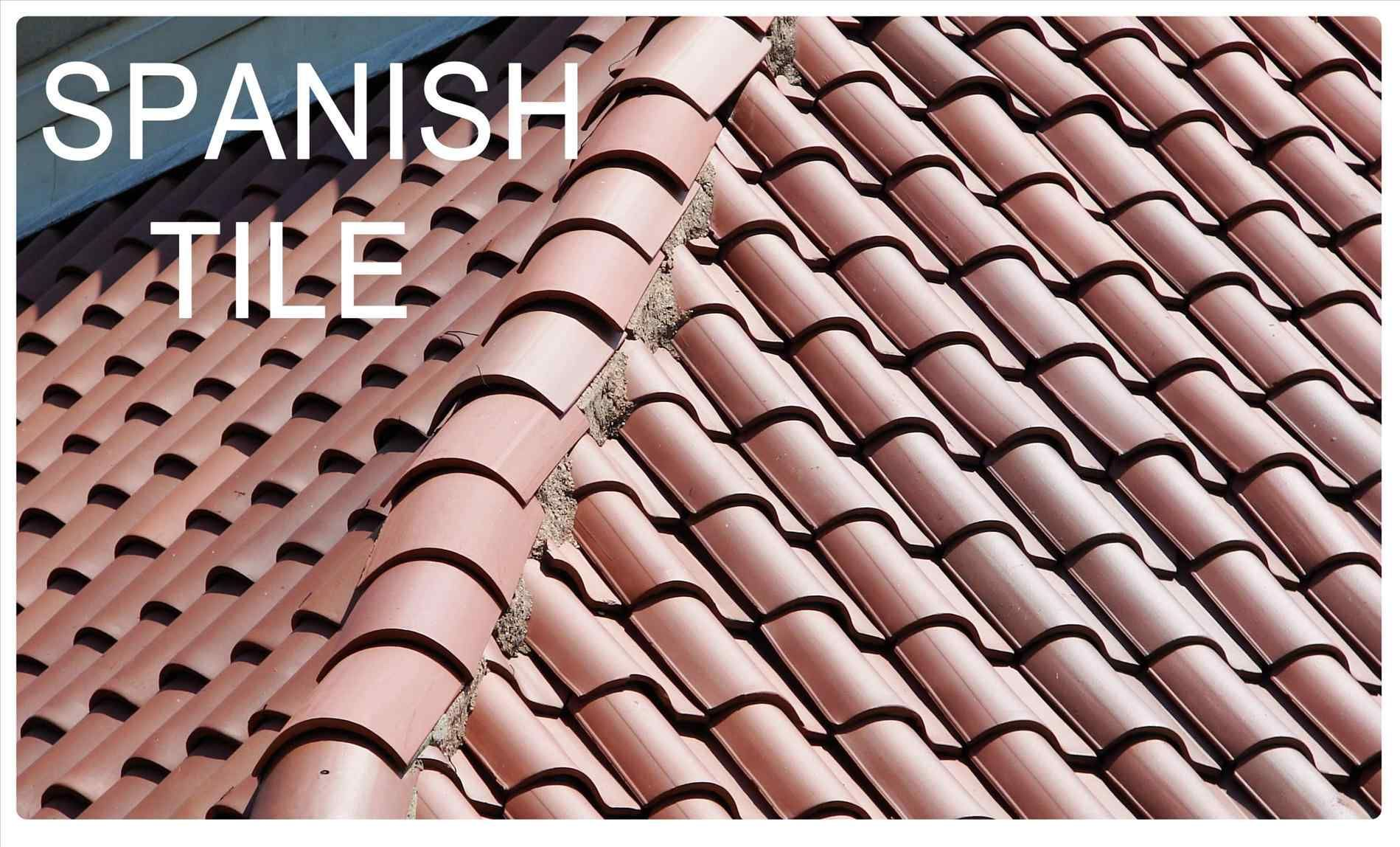Zincshield Roof Zinc Strips Prevent Roof Stains Caused By Algae Fungus Mold Moss Mildew Lichen Mildew Roof Cleaning Moss