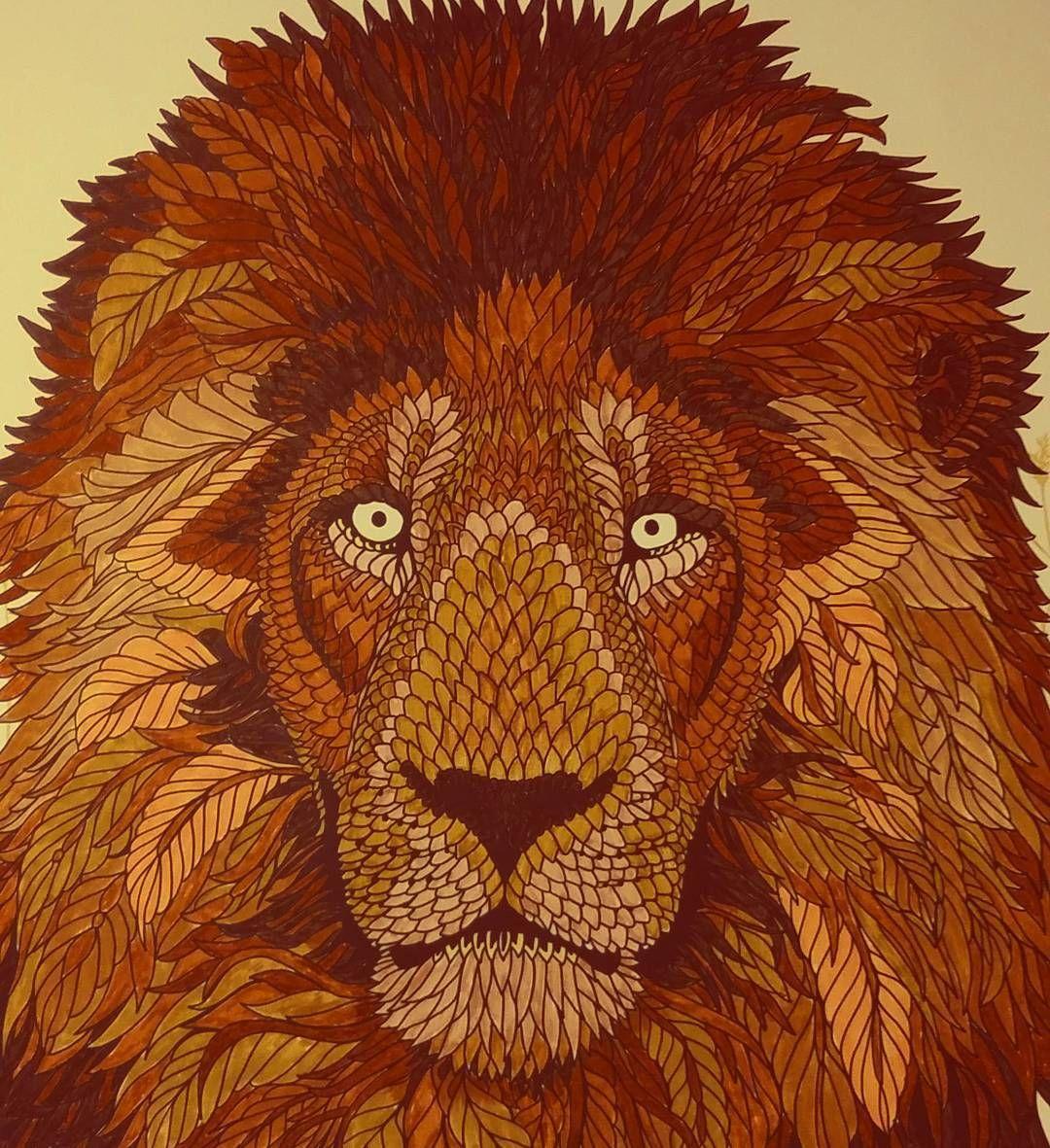 Pin by doogie doo on menag pinterest lions color pencil