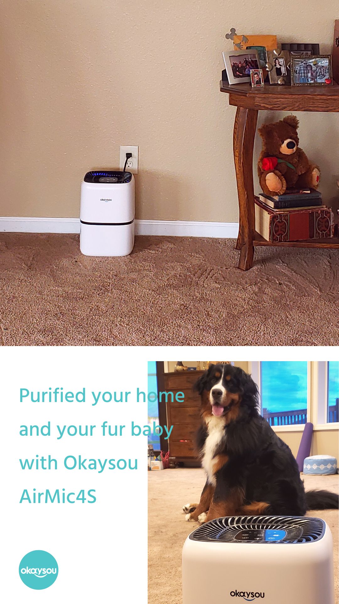 purifier filter cleaner air filters pet Allergen dog cat
