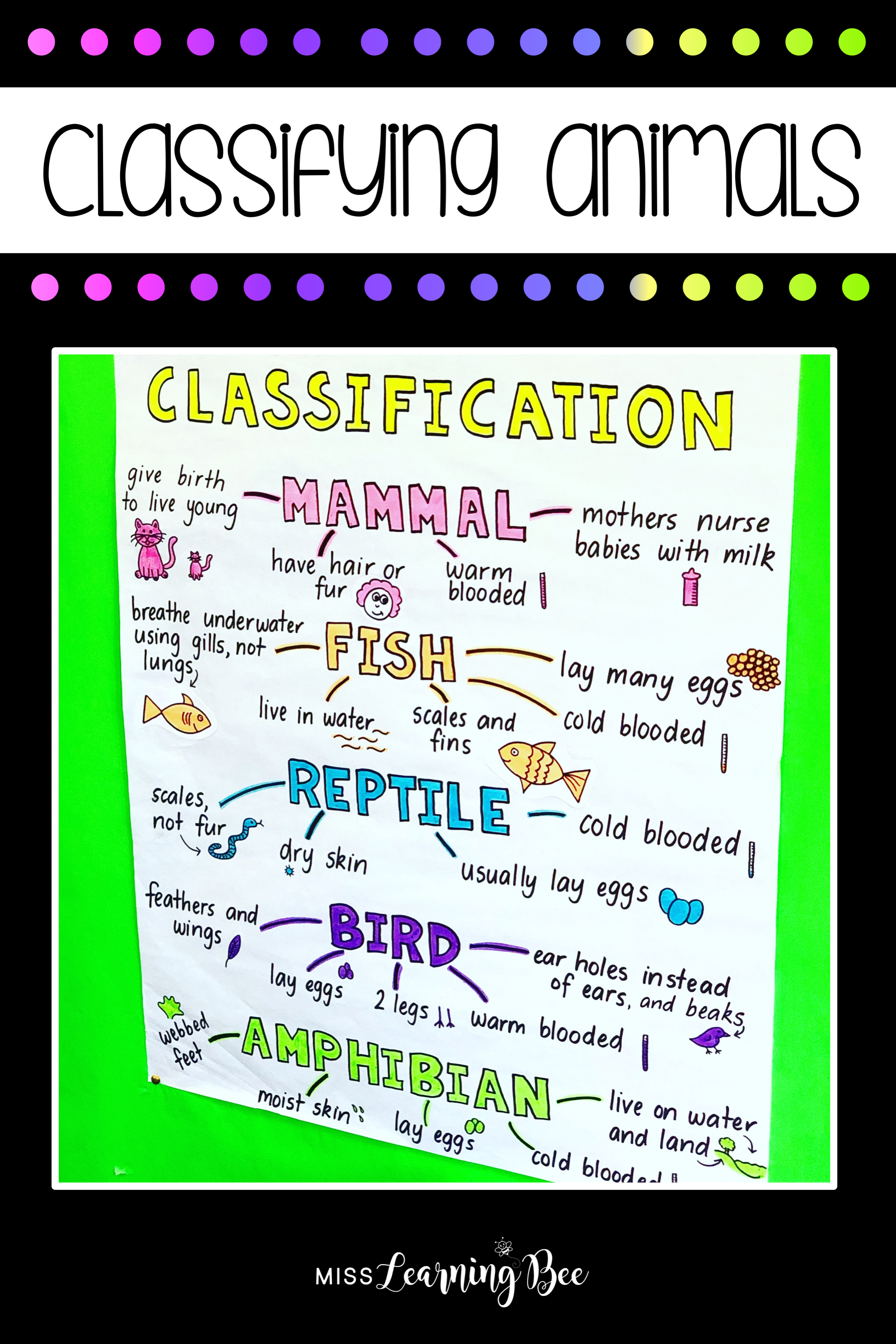 Pin On Writing Lesson Ideas