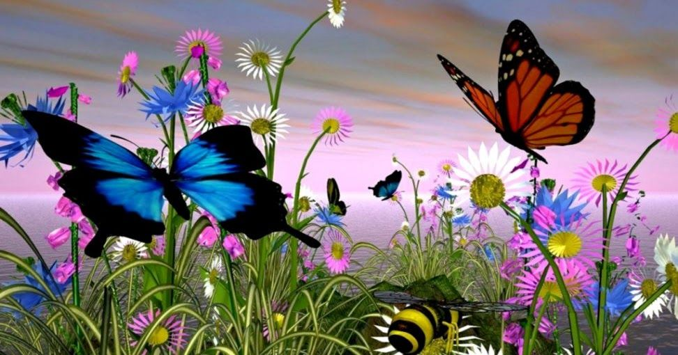 Moving Butterfly Screensavers Butterfly Animated Desktop Best Wallpaper Background Butterfly Wallpaper Colorful Butterflies Butterfly Pictures