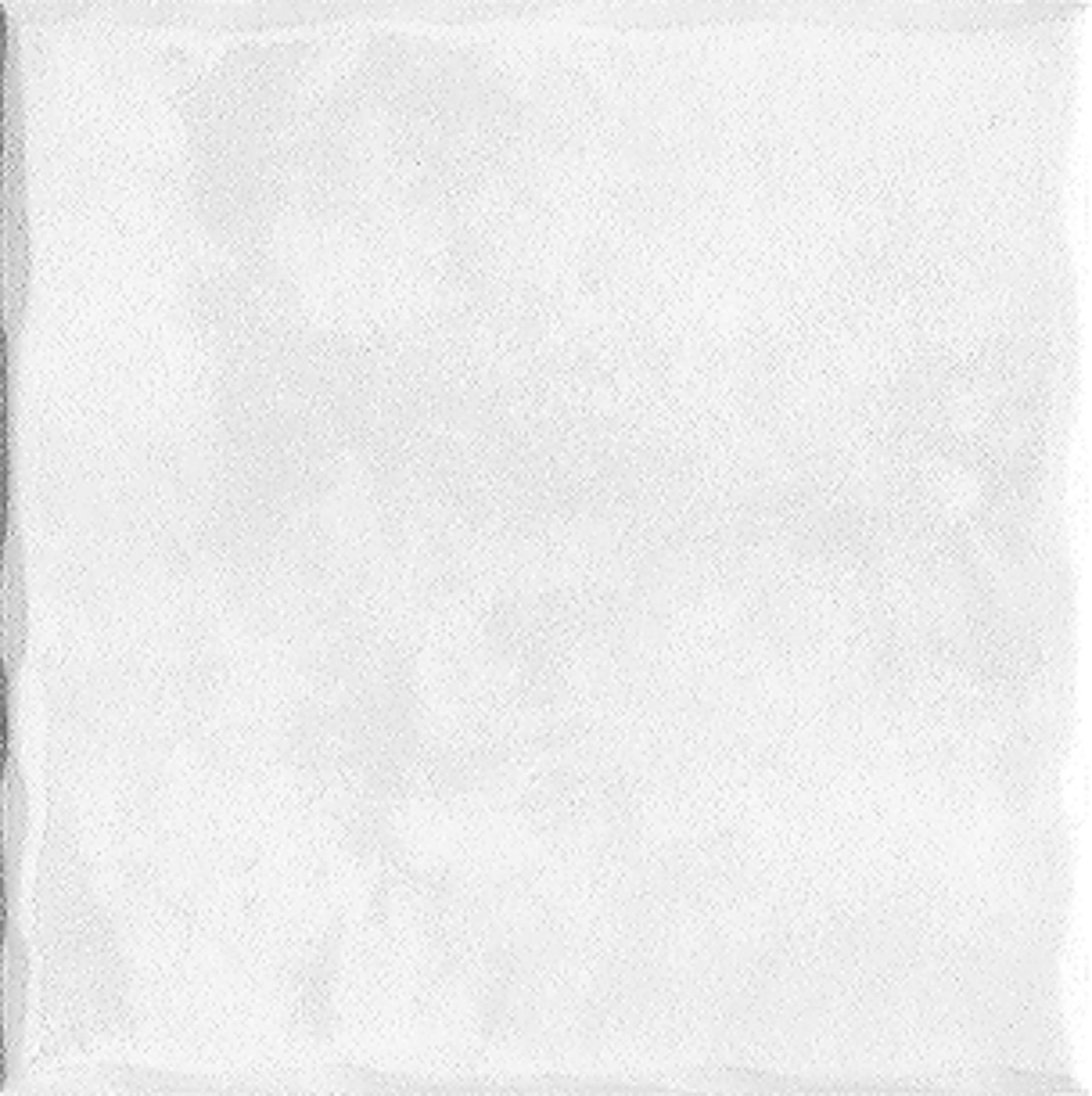 Tile Floor Ceram Coulson 20x20cm Montana White Bunnings