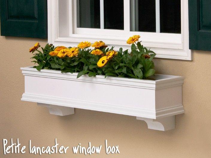 white window box with yellow flowers