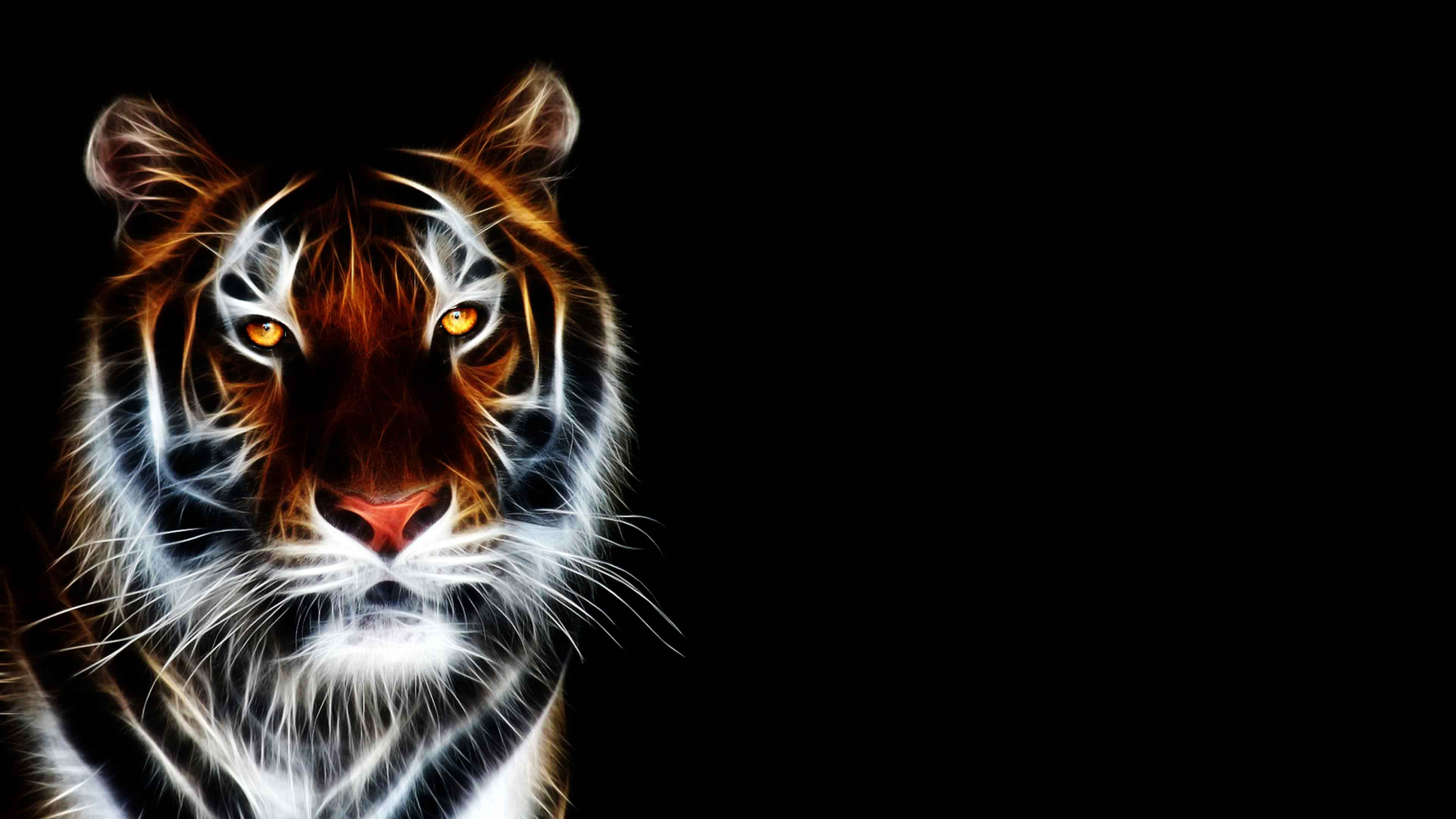 black white tiger green eyes hd widescreen desktop | wallpapers