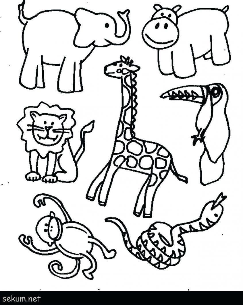 8 Printable Animal Colouring Pages Zoo Animal Coloring Pages Zoo Coloring Pages Jungle Coloring Pages