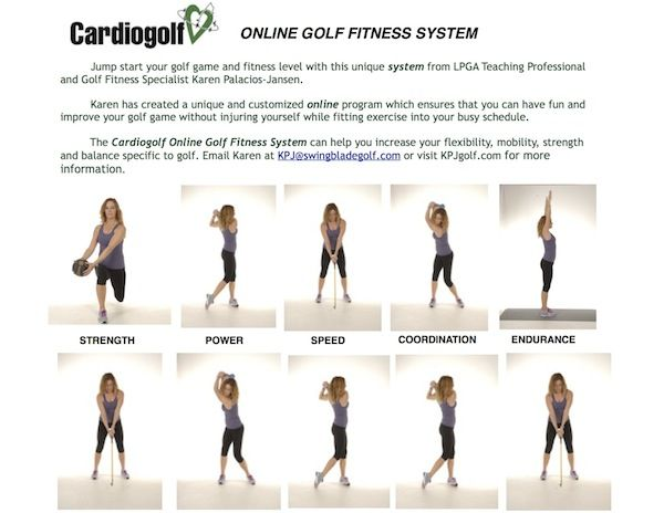 recipe: gym exercises for golfers [4]