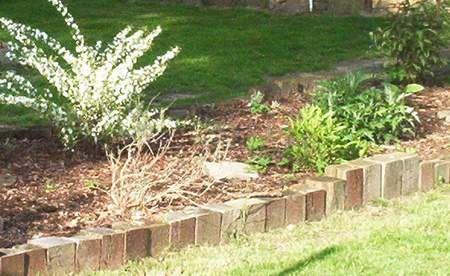 beetumrandung aus eichenholz - bed border | garten ideen, Garten und bauen