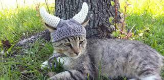 Bildergebnis für Cat Desktop Mail Organizer ~Handmade Wood Functional Art ~Cat Lover