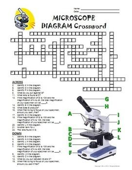 Microscope Crossword with Diagram {Editable} (With images