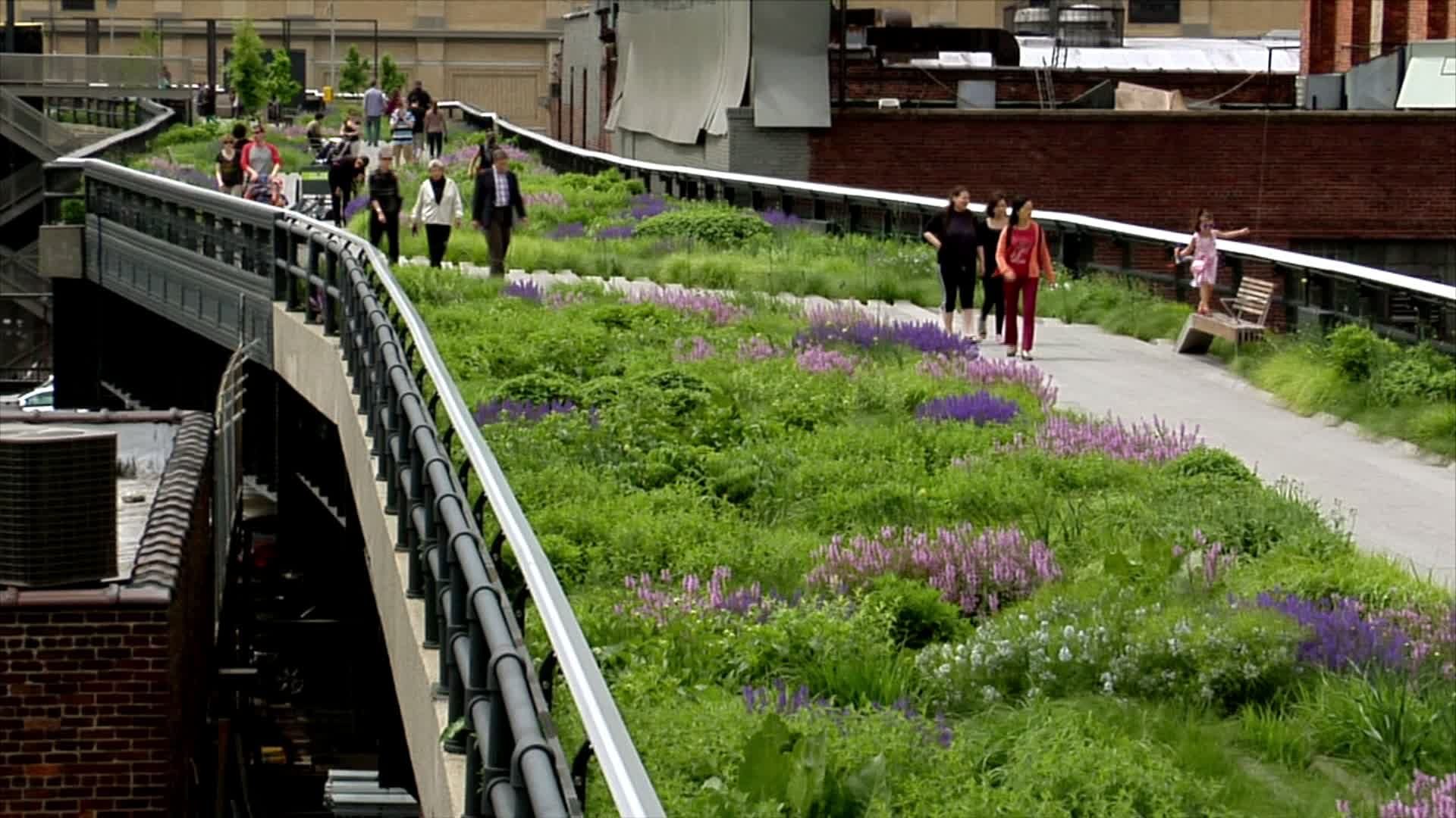 The High Line winds through neighborhoods, buildings, and years of ...
