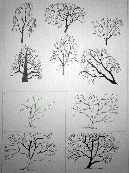 Drawing Trees Stromy Pinterest Disegno Arte Arte A Alberi Di